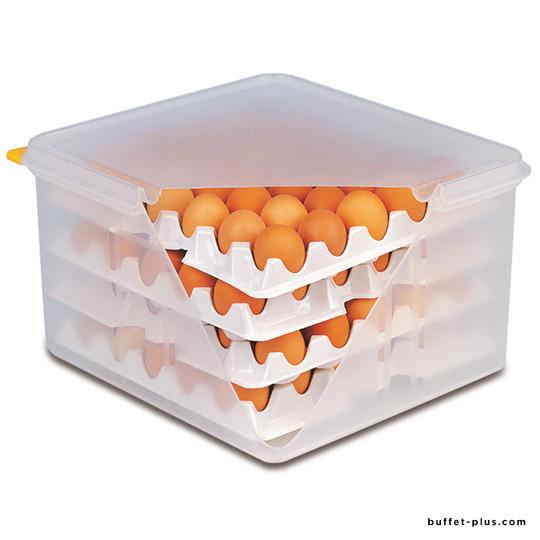 Plateaux alvéoles pour œufs